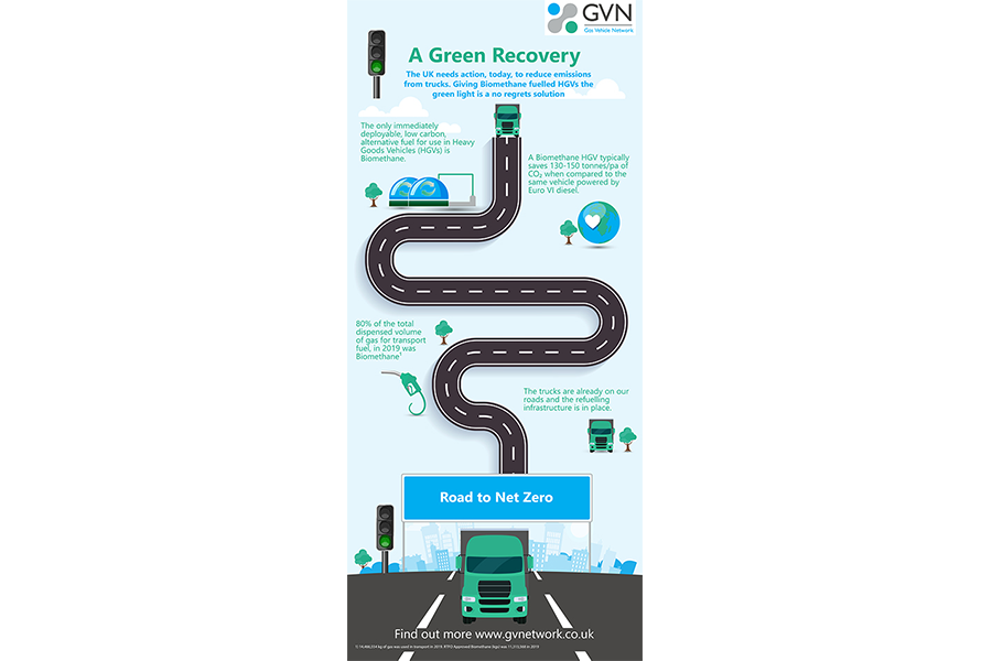 A Green Recovery Infographic web